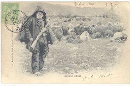 Cpa  Berger Corse ( Moutons ) ..  ((S.130)) - Non Classés