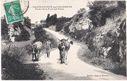 16. CHATEAUNEUF-SUR-CHARENTE. Route De La Font-qui-Pisse. 12 - Chateauneuf Sur Charente