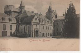 CPA - CHATEAU DE BUSSET - LA COUR - PRECURSEUR - R & J. D - 10179 G - Autres Communes