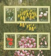 #201  FLOWERS, TULIPS, PLANTS, 2006, Mi6055/60, MNH**, BLOCK, ROMANIA. - Blocchi & Foglietti