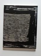 Hernandez Pijuan. Pintures I Dibuixos. 1958-2003. (art Abstracte Acadèmia De Belles Arts Sabadell) - Libros, Revistas, Cómics