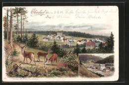 Lithographie Oberhof, Panorama Und Bahnhof - Oberhof
