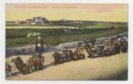 TURQUIE - CONSTANTINOPLE Chameaux Et Hôpital Bulgare - Turkey