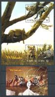178 SAINT CHRISTOPHE (St Kitts) 2005 - Yvert 1192/95 BF 73 - Felin Tigre Leopard - Neuf ** (MNH) Sans Trace De Charniere
