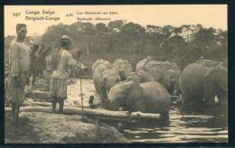 BELGIAN CONGO STATIONERY ELEPHANTS BATHING 1922 - Belgium