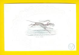 +/-1850 GAEREMYNCK LITHO DAVELUY BRUGGE WIND-HOND CHIEN VISITE NAAMKAARTJE CARTE PORCELAINE RELIEF PORSELEINKAART 548 - Généalogie
