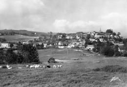 Vue Générale De   LATOUR D´AUVERGNE (Puy De Dôme) - Otros Municipios