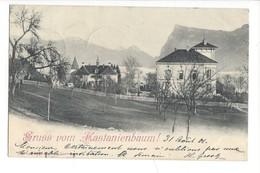 15727 -  Gruss Vom Kastanienbaum - LU Lucerne