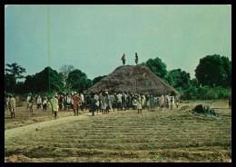 GUINÉ-BISSAU- Choro ( Ed. Casa Govea Nº 106)   Carte Postale - Guinea Bissau