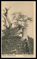 BISSAU - Fortaleza De Bissau ( Ed. Neogravura Lda.)   Carte Postale - Guinea Bissau