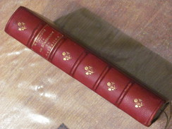 1865 La Vie Domestique En Palestine Mary Eliza Rogers Jaffa Jerusalem Nazareth Haifa - Livres, BD, Revues