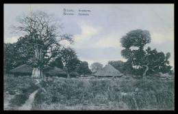 BISSAU - Arredores  Carte Postale - Guinea Bissau