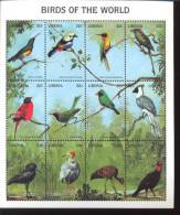 LIBERIA   1350  MINT NEVER HINGED MINI SHEET OF BIRDS   M ( REVISED - Oiseaux