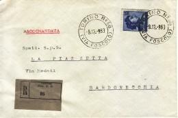 1963 - MICHELANGIOLESCA L.115  ISOLATO SU RACCOMANDATA VEDI++++ - 6. 1946-.. Repubblica