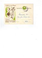 Entier Postal Du Portugal Espanhol De Gondarém  (Cabeceiras De Basto) - Marcophilie