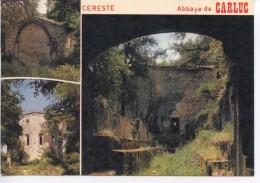 CERESTE - Abbaye De Carluc - Autres Communes