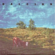 HALCION - Squelch - 45t - QUIXOTIC RECORDS - POST PUNK - Punk