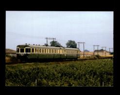 33 - Dans Le Vignoble Bordelais - Train - Locomotive - Omnibus - France
