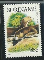 SURINAM: **, PA N°99, TB - Suriname