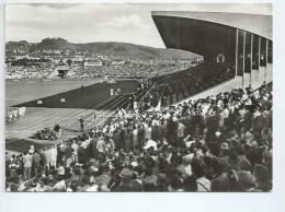 Allemagne.Stuttgart. Le Stade D'athlétisme - Stuttgart