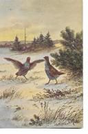 "Rosler    -  ""Gibier   Oiseaux  Dans  Neige - Illustrateurs & Photographes"