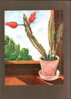 Kaktus Am Fenster  / Druck / September   1929 - Revues & Journaux