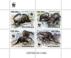 Mozambique. 2016 WWF – Otter. (401a)