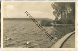 Szczecinek - Neustettin - Seepromenade - Foto-Ansichtskarte - Verlag S. Brandt Neustettin - Pommern