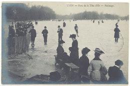 Cpa Lyon - Parc De La Tête D'Or - Patinage   ((S.371)) - Lyon