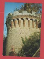 ET/77  SEIGNELAY LA TOUR VESTIGE DU CHATEAU DU MARQUIS DE COLBERT   RECTO VERSO - Seignelay