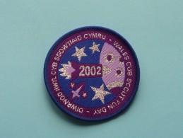 Boy Scouts Badge : WALES CUB SCOUT FUN DAY 2002 ( Zie Foto Voor Detail ) ! - Scoutisme