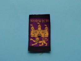 Boy Scouts Badge : NORWICH ( Zie Foto Voor Detail ) ! - Scoutisme