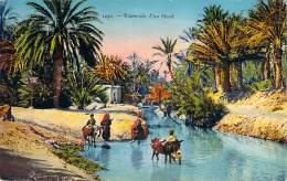 Scènes Et Types - Traversée D'un Oued (âne) - Algeria