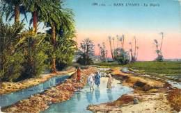 Scènes Et Types - Dans L'Oasis, La Séguia - Algeria