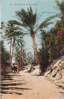 Scènes Et Types - Un Sentier Dans L'Oasis - Algeria