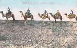 Scènes Et Types - Chameliers En Marche Dans Le Désert - Algeria