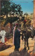 Scènes Et Types - Dans Le Village (âne) - Algeria