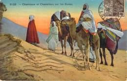 Scènes Et Types - Chameaux Et Chameliers Sur Les Dunes - Algeria