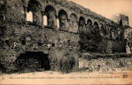 DRUYES-les-BELLES-FONTAINES (Yonne) - Ancien Château - Ruines De La Grande Salle - Andere Gemeenten