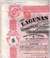 The Lagunas Nitrate Company - Certificat D´actions Au Porteur Pour 5 Actions - Mines