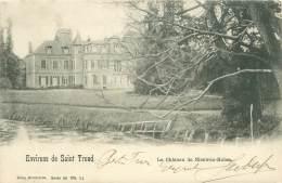Environs De Saint Trond - Le Château De Nieuwen-Molen - Sint-Truiden