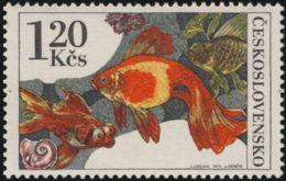 Czechoslovakia / Stamps (1975) 2144: Aquarium Fish (Carassius Auratus Gold); Painter: Josef Liesler