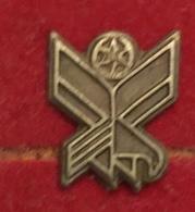 INSIGNE MILITAIRE - Militari