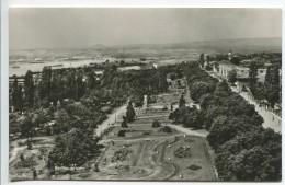 Turnu-Severin - Roses Park - Roumanie