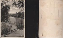 7857) PALESTINE RIVER JORDAN PALESTINA FIUME GIORDANO NON VIAGGIATA 1930 CIRCA CRAQUELET SUL LUCIDO - Palestina