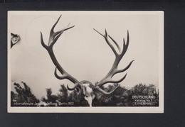 Dt. Reich Internationale Jagd Austellung Berlin 1937 - Esposizioni