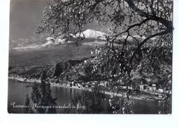 N3307 Cartolina Della Sicilia - Taormina ( Messina ) Panorami Con Mandorli In Fiore E Etna ( Vulcano ) Innevato _ VIAG. - Italia