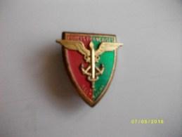 Insigne Forces Françaises En ALLEMAGNE - Medals