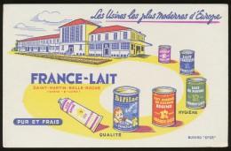 Buvard -  FRANCE-LAIT - Pur Et Frais - Blotters