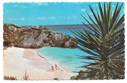 Bermuda - A Secluded Cove, South Shore - Pub For Bermuda Drug Hamilton - Bermudes